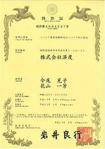 カリカ パパイア果実発酵物の製造方法